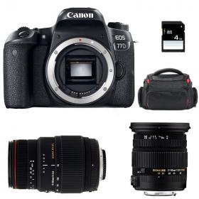 Canon EOS 77D + Sigma 17-50 F2.8 DC OS EX HSM + Sigma 70-300 f/4-5,6 APO DG MACRO + Sac + SD 4 Go