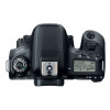 Canon EOS 77D + Sigma 17-70 F2.8-4 DC Macro OS HSM Contemporary + Sigma 70-300 f/4-5,6 APO DG + Sac + SD 4 Go