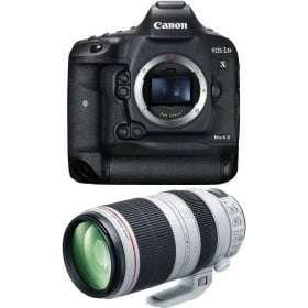 Canon EOS 1D X Mark II + EF 100-400mm f4.5-5.6L IS II USM