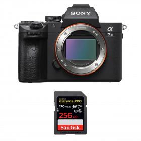 Sony Alpha 7 III Body + SanDisk 256GB Extreme PRO UHS-I SDXC 170 MB/s   2 Years Warranty