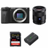 Sony ALPHA 6600 + Sony Sonnar T* FE 55mm f/1.8 ZA + SanDisk 256GB Extreme PRO UHS-I SDXC 170 MB/s + NP-FZ100 | Garantie 2 ans
