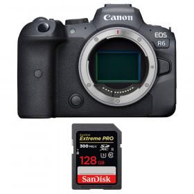 Canon EOS R6 Nu + SanDisk 128GB Extreme PRO UHS-II SDXC 300 MB/s