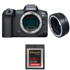 Canon EOS R5 + EF-EOS R + SanDisk 256GB Extreme PRO CFexpress Type B