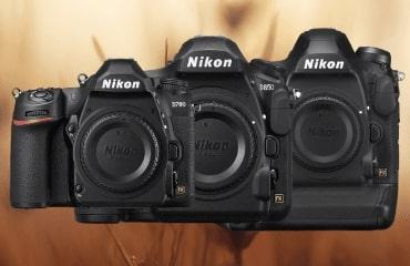 Nos réflexs Nikon